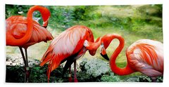 Flamingo Friends Beach Towel by Beverly Stapleton