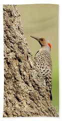 Flicker On Tree Trunk Beach Towel
