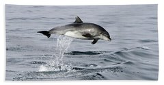 Flight Of The Dolphin Beach Towel