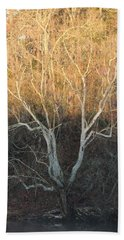 Beach Towel featuring the photograph Flint River 12 by Kim Pate