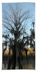 Beach Towel featuring the photograph Flint River 13 by Kim Pate