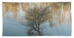 Beach Towel featuring the photograph Flint River 24 by Kim Pate