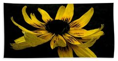 Beach Towel featuring the photograph  Black Eyed Susan Suspense by Ecinja