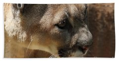 Beach Towel featuring the photograph Florida Panther by Meg Rousher
