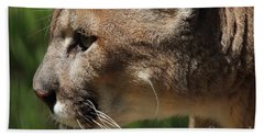 Beach Towel featuring the photograph Florida Panther Profile by Meg Rousher
