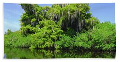 Florida Swamps Beach Sheet by Carey Chen