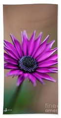 Flower-daisy-purple Beach Towel