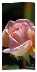 Flower-pink And Yellow Rose-bud Beach Sheet