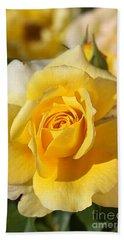 Flower-yellow Rose-delight Beach Sheet