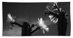 Flowering Cactus 4 Bw Beach Towel