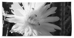 Flowering Cactus 5 Bw Beach Towel