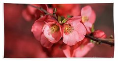 Flowering Quince Beach Towel