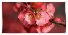 Flowering Quince Beach Sheet by Joy Watson