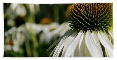 Flowers - Echinacea White Swan Beach Sheet