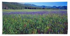 Flowers In A Field, Salmon, Idaho, Usa Beach Towel