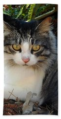 Fluffy Cat Beach Sheet by Pamela Walton