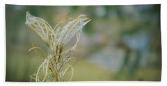 Fluffy Weed Close-up Against Blurry Background Beach Sheet by Vlad Baciu