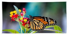 Flutter By Beach Towel