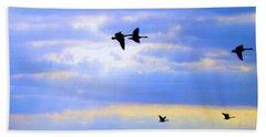 Fly Like The Wind Beach Sheet