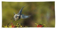 Flying Florida Scrub Jay Photo Beach Sheet
