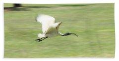 Flying Ibis Beach Towel