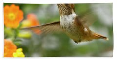 Beach Towel featuring the photograph Flying Scintillant Hummingbird by Heiko Koehrer-Wagner