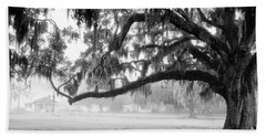 Foggy Morning On Coosaw Plantation Beach Towel
