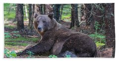 Beach Towel featuring the photograph Forest Bear by Chris Scroggins