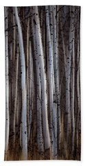 Forest Of Birch Trees  Alberta, Canada Beach Towel