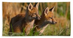 Fox Cubs At Sunrise Beach Towel