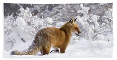 Fox In The Snow Beach Towel by Roeselien Raimond
