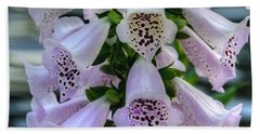 Foxglove At Waters Edge Beach Sheet