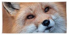 Foxy Lady Beach Sheet