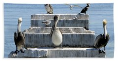 Pelican Friends Beach Towel