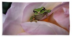 Frog And Rose Photo 1 Beach Towel by Cheryl Hoyle