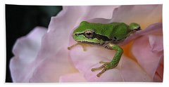 Frog And Rose Photo 3 Beach Towel by Cheryl Hoyle