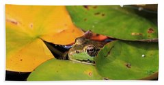 Frog Pond 3 Beach Towel