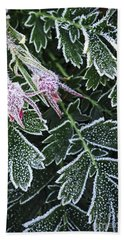 Frost On Plants In Late Fall Beach Towel
