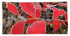 Frosted Blueberry Leaves Beach Towel