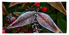 Frosted Nandina Leaves Beach Sheet by Kathryn Meyer