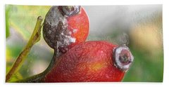Beach Towel featuring the photograph Frosted Rosehips by Nina Silver