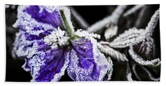 Frosty Purple Flower In Late Fall Beach Towel