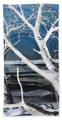 Beach Towel featuring the photograph Frozen In Time by Shawna Rowe