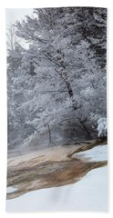Frozen Tree Beach Sheet