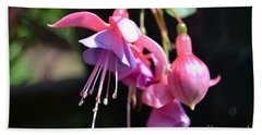 Fuchsia Flower Beach Sheet