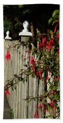 Fuchsias  And Fence Posts Beach Towel