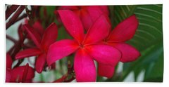 Garden Treasures Beach Towel by Miguel Winterpacht