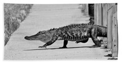 Gator Walking Beach Towel