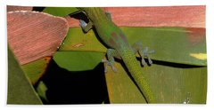 Gecko Beach Towel by Pamela Walton