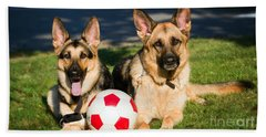 German Shepherd Sisters Beach Sheet by Eleanor Abramson